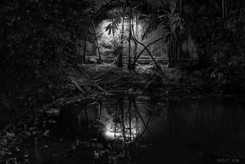 Bright reflections in a dark pool at night