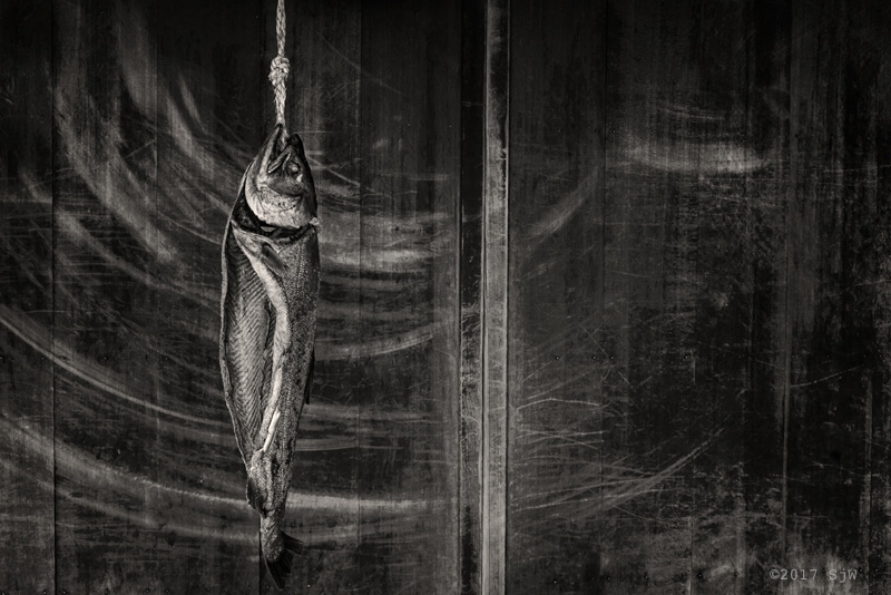 Dried fish hanging on a rope in front of a wooden door